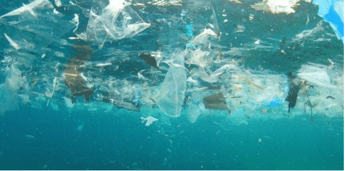 "Micro-plastic, the ""invisible killer"" that harms the global environment 3"