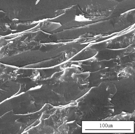 Application of Scanning Electron Microscope in Material Analysis 3