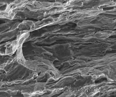 Application of Scanning Electron Microscope in Material Analysis 6