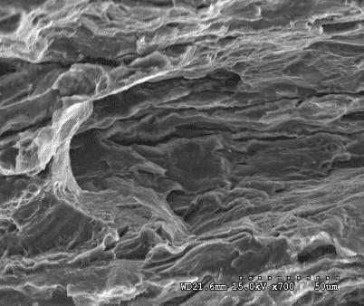 Aplikasi Scanning Electron mikroskop ing Analisis Bahan 6