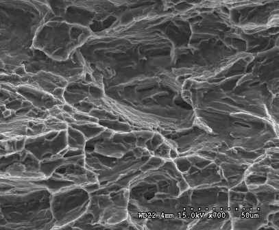 Application of Scanning Electron Microscope in Material Analysis 7