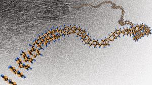Nanofils unidimensionnels ordonnés à longue portée