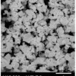 Tiges de carbure de tungstène 5